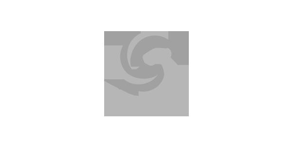 字工场合作客户:CGXCIG